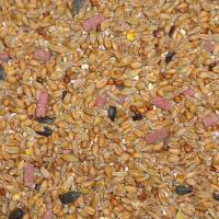 Wild Bird Original With Hi Energy Suet Pellets