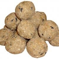Twootz Signature Hi Energy Suet Fat Balls